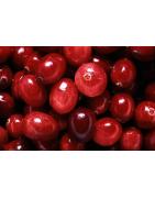 Vruchten Dranken