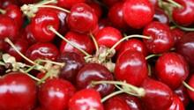 Bier Fruit
